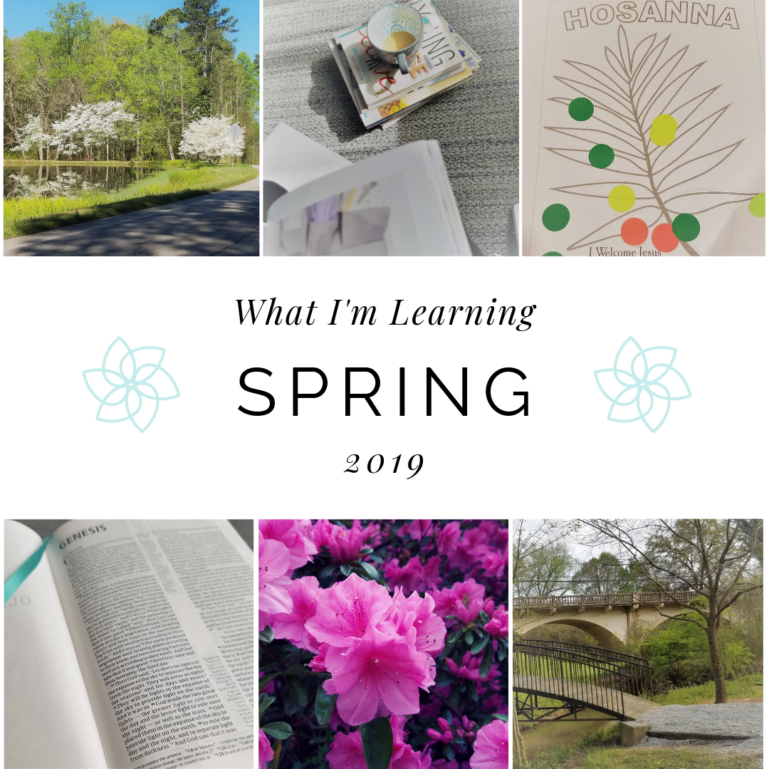 What I'm Learning – Spring 2019 Edition